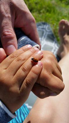 Leppis pienessä kädessä
