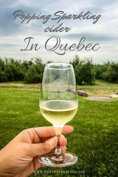 Discover the cider route in Quebec, only 30 min away from Montreal. #sparklingcider #cider #quebec #Canada #travel #summer  #fall
