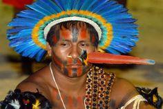 São Paulo - Conheça seu Estado (História e Geografia): 27 - A população indígena na região do estado de S...