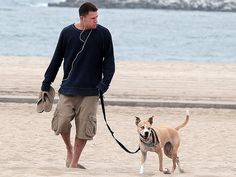 Channing Tatum and Lulu http://celebnco.com/8-most-charming-pets-of-celebrities/5/