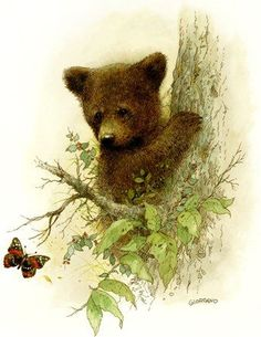 Новости Watercolor Animals, Watercolor Art, Art D'ours, Bear Paintings, Art Carte, Bear Art, Cute Animal Pictures, Wildlife Art, Animal Drawings