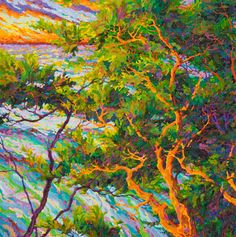 Pacific Sunset - Ocean Light Through the Trees 36