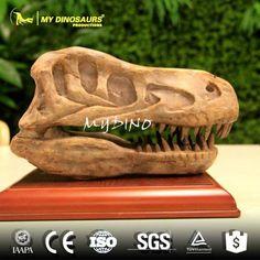 DS-115 Artificial Prehistoric Animal Dinosaur Fossil Velociraptor Skull
