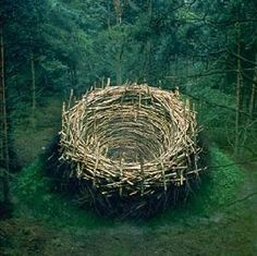 Un nid géant de Nils Udo