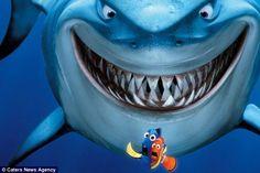Similar: The shark's razor sharp smile has drawn comparisons with Disney character Bruce i...