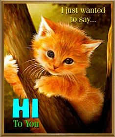 """From: Sarah Young - I just wanted to say """"Hi!"""" ❤ used June 20 2017 Cute Good Morning Quotes, Good Morning Messages, Good Night Quotes, Good Morning Good Night, Good Morning Wishes, Morning Images, Hello Quotes, Hi Quotes, Good Night Greetings"""