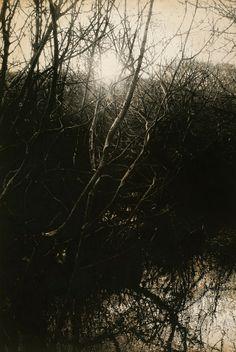 Sarah Gillespie - Artist: Primordial darkness