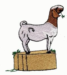 Boer Goat Head Clip Art | Clip Art by Jackie Nix | Cartoon ...