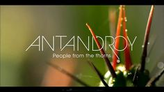 Antandroy by Band-Originale. F.ONE new movie shot on RED in Magadascar last summer.