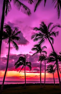 Sunset at Oahu, Hawaii