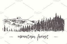 Fir forest in the mountains by Bakani on @creativemarket