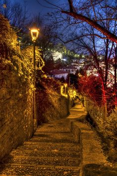 Little rocky steps to the Lower City by night, Bergamo Places Around The World, Oh The Places You'll Go, Around The Worlds, City By Night, Rocky Steps, Holidays In May, Roads And Streets, Places In Italy, Little Italy