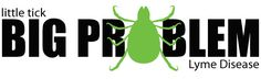 new website designed to help people living with Lyme Disease (especially teenagers)