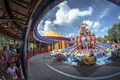 Magic Kingdom - Dumbo