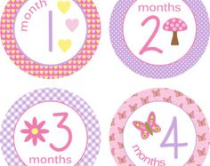 ON SALE Monthly Baby Milestone Stickers by LittleLillyBugDesign