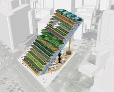 Vertical farming, also known as urban agriculture, gives hope for feeding our ever-growing population. Get ideas for starting your vertical farm. Architecture Company, Green Architecture, Architecture Design, Urban Agriculture, Urban Farming, Urban Gardening, Hydroponic Gardening, Indoor Gardening, Agriculture Verticale