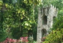 All 15 things to do in St Kitts - The top St Kitts tours and things to do in St Kitts.