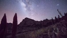 Teide in the night #timelapse #outdoors #hiking #senderismo #tajinaste #Teide #landscape #sky #night #cielo #star #estrellas #nocturnas #tenerifesenderos #paisajes #fotostenerife #milkyway #IslasCanarias #Tenerife