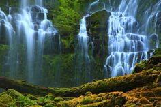 a029_proxy_falls__willamette_national_forest__or.jpg