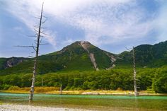 Taisho pond - null