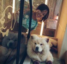 Popo & Miru: dog café in Yeongtong, Suwon! Dog Cafe, Suwon, South Korea, Wordpress, Places, Dogs, Travel, Animals, Viajes