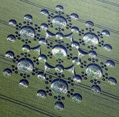 key circles surround a seventh circle in the middle eighteen circles - crop circles Aliens And Ufos, Ancient Aliens, Ancient History, European History, American History, Crop Circles, Circle Art, Circle Design, Latest Ufo Sightings