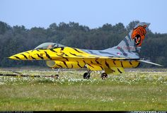 A second helping of Tiger Paint Scheme Aircraft:    I just love it when fighter jets (or any other aircraft for that matter) are painted in...