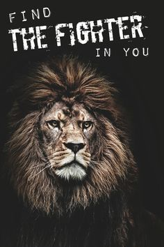 The wicked flee though no one pursues, but the righteous are as bold as a lion. -Proverbs 28:1 ESV.