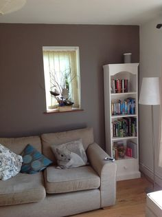 Feature wall in our living room (paint colour Dulux Classics Cocoa Powder)