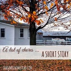 A List of Chores - Amish Short Story - The aroma of bacon from breakfast still lingered in the air as Stella sat at the table finishing the last of her morning coffee.