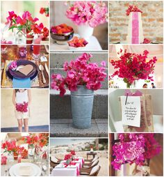 Tropical Flowers: Bougainvillea