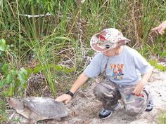 Hiking in the Everglades ~Florida Hiking In Florida, Go Outside, Camping, Animals, Campsite, Animales, Animaux, Animal, Animais