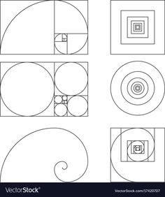 Golden ratio template fibonacci vector image on VectorStock Graphisches Design, Design Elements, Logo Design, Graphic Design, Fibonacci Golden Ratio, Fibonacci Spiral, Golden Ratio In Design, Phi Golden Ratio, Golden Ration