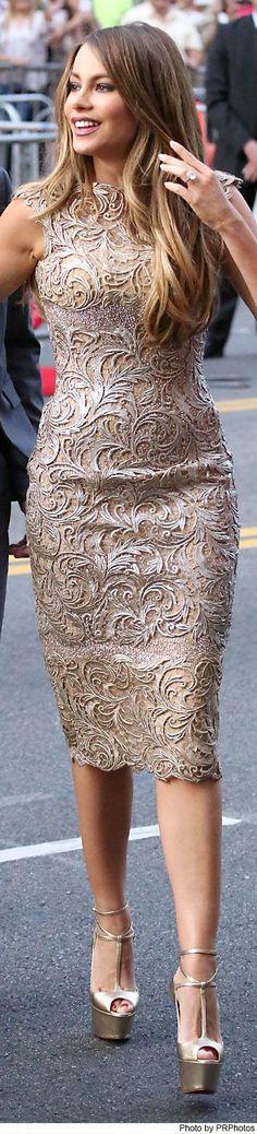 Sofia Vergara wearing Georges Chakra Haute Couture Dress, Christian Louboutin Talitha Platform Pump, Neil Lane Earrings & Harry Kotlar Diamond Ring - Hot Pursuit LA Premiere - 04/30/2015