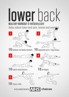 Back Workout / Helps reduce lower back pain, tension, stiffness & soreness.Lower Back Workout / Helps reduce lower back pain, tension, stiffness & soreness. Fitness Workouts, Yoga Fitness, At Home Workouts, Health Fitness, Hero Workouts, Killer Ab Workouts, Fitness Foods, Easy Fitness, Neila Rey Workout