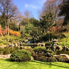 Kyoto Garden | 17 Things You Must Do When The Weather's Nice In London