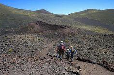 Caminemos en familia por La Palma