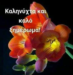 Good Night, Anastasia, Decor, Nighty Night, Decoration, Decorating, Good Night Wishes, Deco