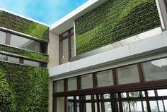 Giardini verticali: muro verde e tetto verde | Arredare casa