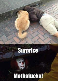sorpresa Sorpresa no muy grata