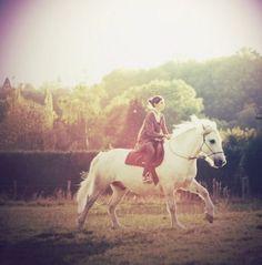 .Vacker häst, vackert ljus.
