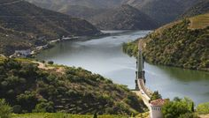 Wine Tourism in Portugal #douro #portowine #taylor's
