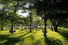 Kasaniemen puisto - ihana alkusyksyn iltapäivä Kaisaniemi park - lovely afternoon in early autumn