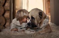 Perro con niño #dog #Dingonatura