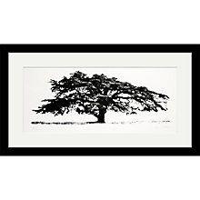 Buy Clare Cutts - Cedar at Coombe Dingle, Original Screenprint, 38 x 68cm Online at johnlewis.com