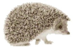 Horatio the Hedgehog a Counted Cross Stitch by WooHooCrossStitch Hedgehog Cross Stitch, Cross Stitch Animals, Cross Stitching, Cross Stitch Embroidery, Cross Stitch Patterns, Stuffed Animal Patterns, Felting, Fiber Art, Needlework