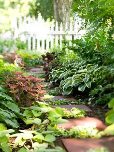 Gardening Love shade garden idea - Enjoy a bold, beautiful color in the shady corners of your yard with our garden design tips! Garden Paths, Lawn And Garden, Garden Landscaping, Landscaping Ideas, Shade Landscaping, Diy Garden, Garden Boxes, Small Gardens, Outdoor Gardens