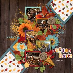 Sweet Shoppe Designs is a full service digital scrapbooking site which offers high quality digital scrapbook products from the industry's top designers. Scrapbook Designs, Scrapbooking Layouts, Digital Scrapbooking, Autumn Leaves, Memories, Make It Yourself, Bingo, Create, Gallery