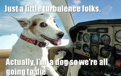 Might be a ruff landing ahead of us