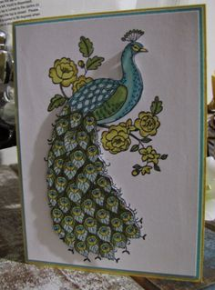 Stampin Up Perfect Peacock Peacock Drawing, Peacock Art, Peacock Feathers, Perfect Peacock, Scrapbook Cards, Scrapbooking, Bee Cards, Stampin Up Catalog, Mixed Media Artwork